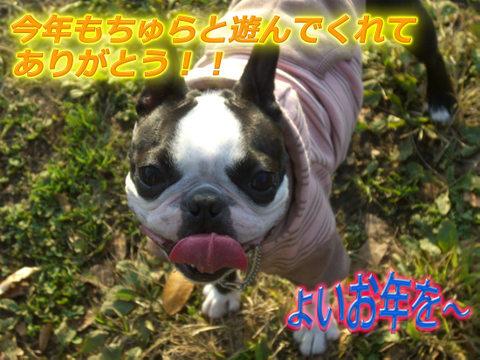 Cimg4613_2